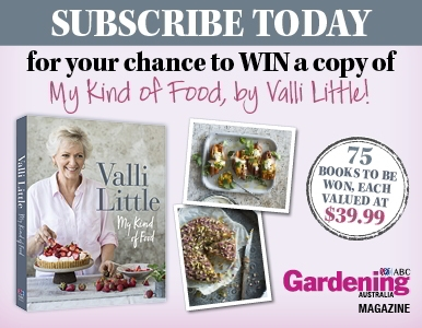 SUBSCRIBE FOR A CHANCE TO WIN MY KIND OF FOOD BY VALLI LITTLE!