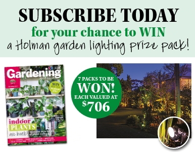 SUBSCRIBE NOW FOR A CHANCE TO WIN A HOLMAN GARDEN LIGHTS PRIZE PACK!