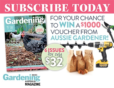 SUBSCRIBE FOR YOUR CHANCE TO WIN A $1000 AUSSIE GARDENER VOUCHER!