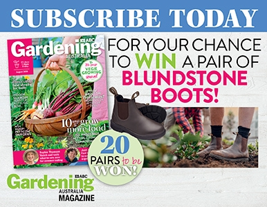 SUBSCRIBE FOR YOUR CHANCE TO WIN A PAIR OF BLUNDSTONE BOOTS!