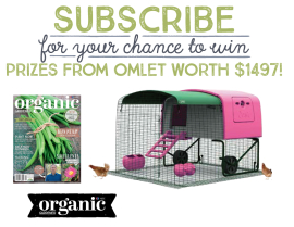 Subscribe for a chance to win prizes from Omlet worth $1497!