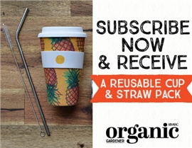 SUBSCRIBE AND RECEIVE A BONUS REUSABLE CUP AND STRAW PACK!